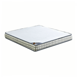 Eclipse Ortho Visco price in delhi | Eclipse Ortho Visco mattress in delhi